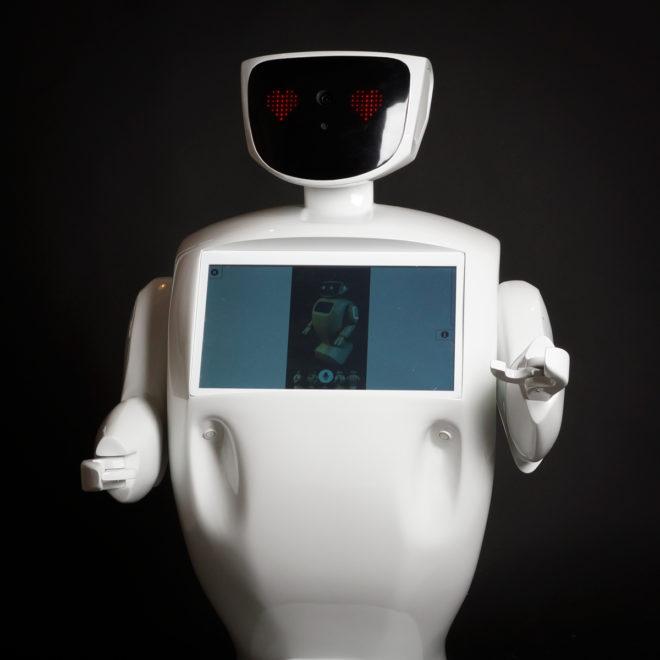 robot promoter VAN (4)